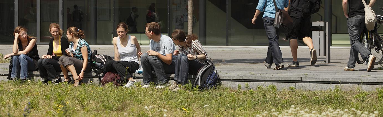 Studierende sitzen im Grünen